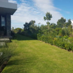 garden maintenance includes hedge row and lawn care by pureh2o in plettenberg bay